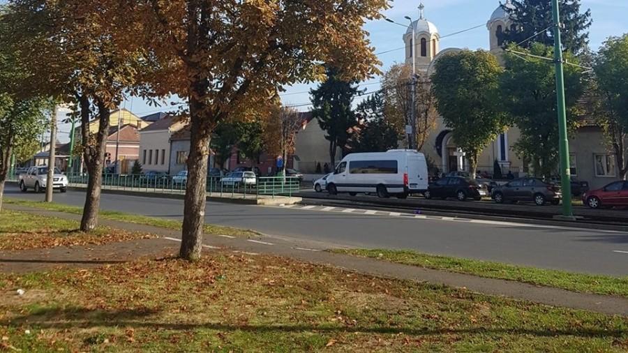 Curăţenia de toamnă ajunge în Aradul Nou