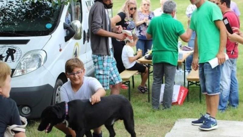 O nouă ediție a Târgului de Adopție Canină are loc sâmbătă