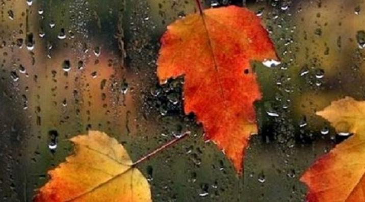 Gata cu vremea frumoasă! ALERTĂ METEO de ploi și vânt puternic