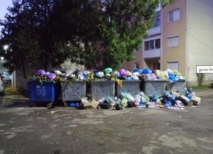 Movile de gunoi neridicat în municipiu: arădenii au surprins că RETIM nu adună selectiv deșeurile
