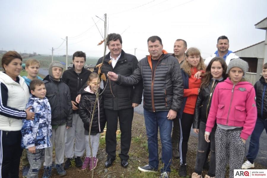 La Frumușeni, în cartierul nou, s-au plantat 500 de puieți de arbori