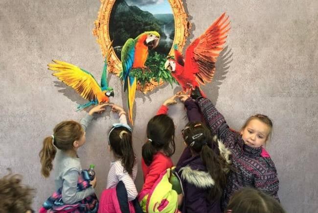 Mii de arădeni sunt așteptați la primul Muzeu al iluziilor optice din România