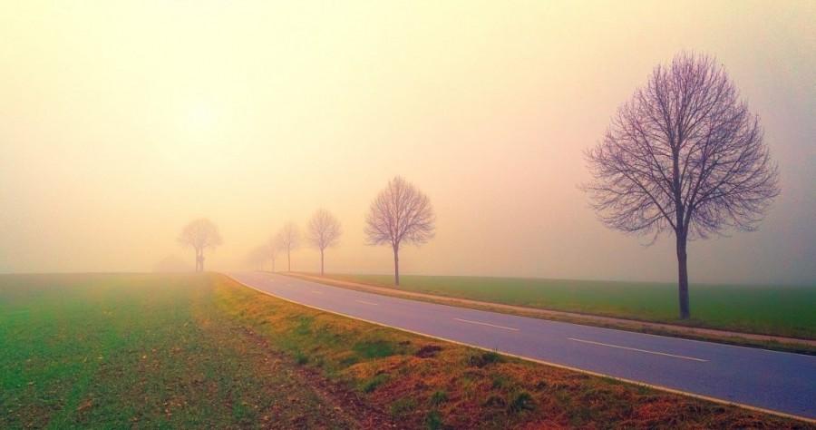 Cod galben de ceață densă și vânt puternic în mai multe județe