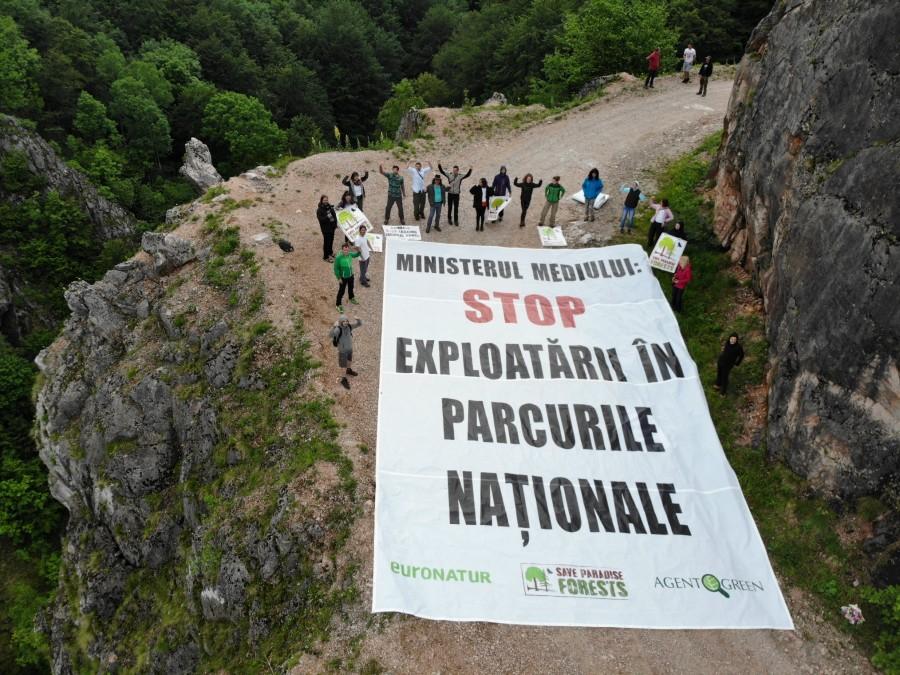 Victorie uriașă pentru Agent Green în instanță! Peste 19.000 de hectare din Parcul Național Domogled au fost salvate