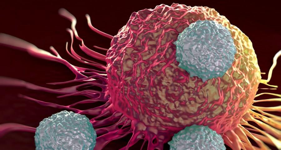 Un nou medicament care luptă mai eficient împotriva cancerului a fost testat cu succes