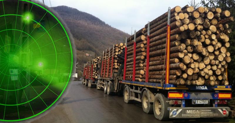 Sistemul de urmărire a transportului de material lemnos va monitoriza în timp real tăierile de păduri