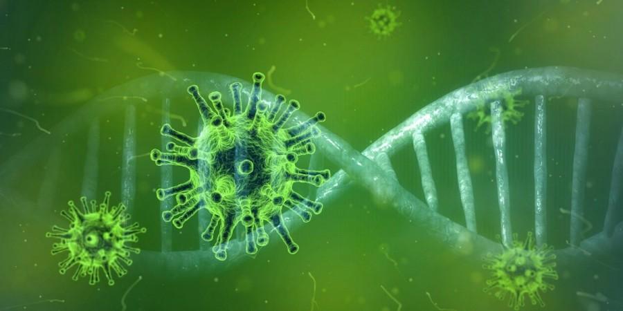 La nivelul Județului Arad erau înregistrate 498 de persoane pozitive la virusul SARS-CoV-2