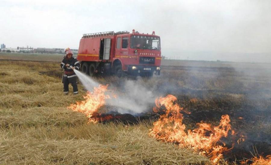 Fermierii care ard miriştile riscă reducerea subvenţiilor sau chiar excluderea de la plată