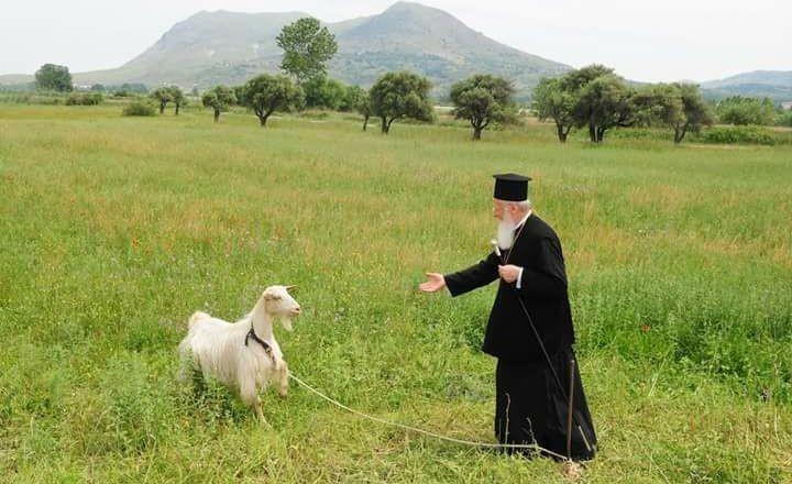 Mesajul Patriarhului Ecumenic, la începutul noului an bisericesc: Respectul pentru mediu este o slăvire practică a numelui lui Dumnezeu