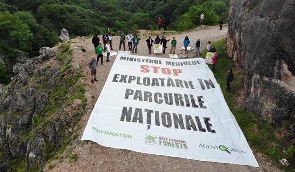Victorie uriașă pentru Agent Green: 20.000 de hectare de păduri seculare, protejate definitiv în Parcul Naţional Domogled-Valea Cernei!