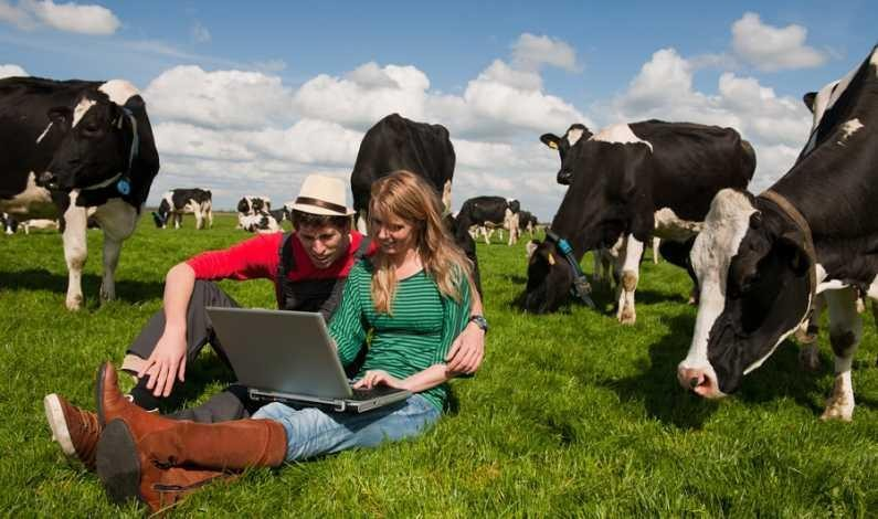 Fermierii afectați de criza COVID-19 pot depune până vineri cererile pentru sprijin financiar