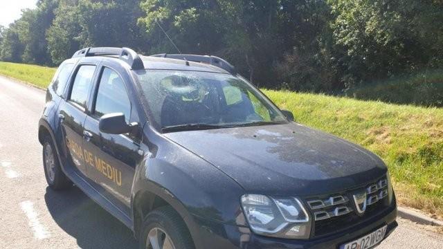 Un echipaj al Gărzii de Mediu atacat cu o sticlă; ce s-a întâmplat cu agresorul