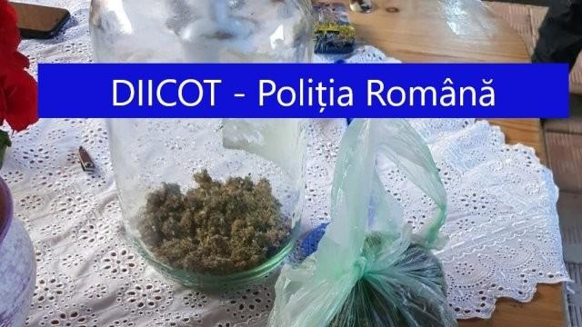 Descinderi în județul Arad într-un dosar de trafic de droguri