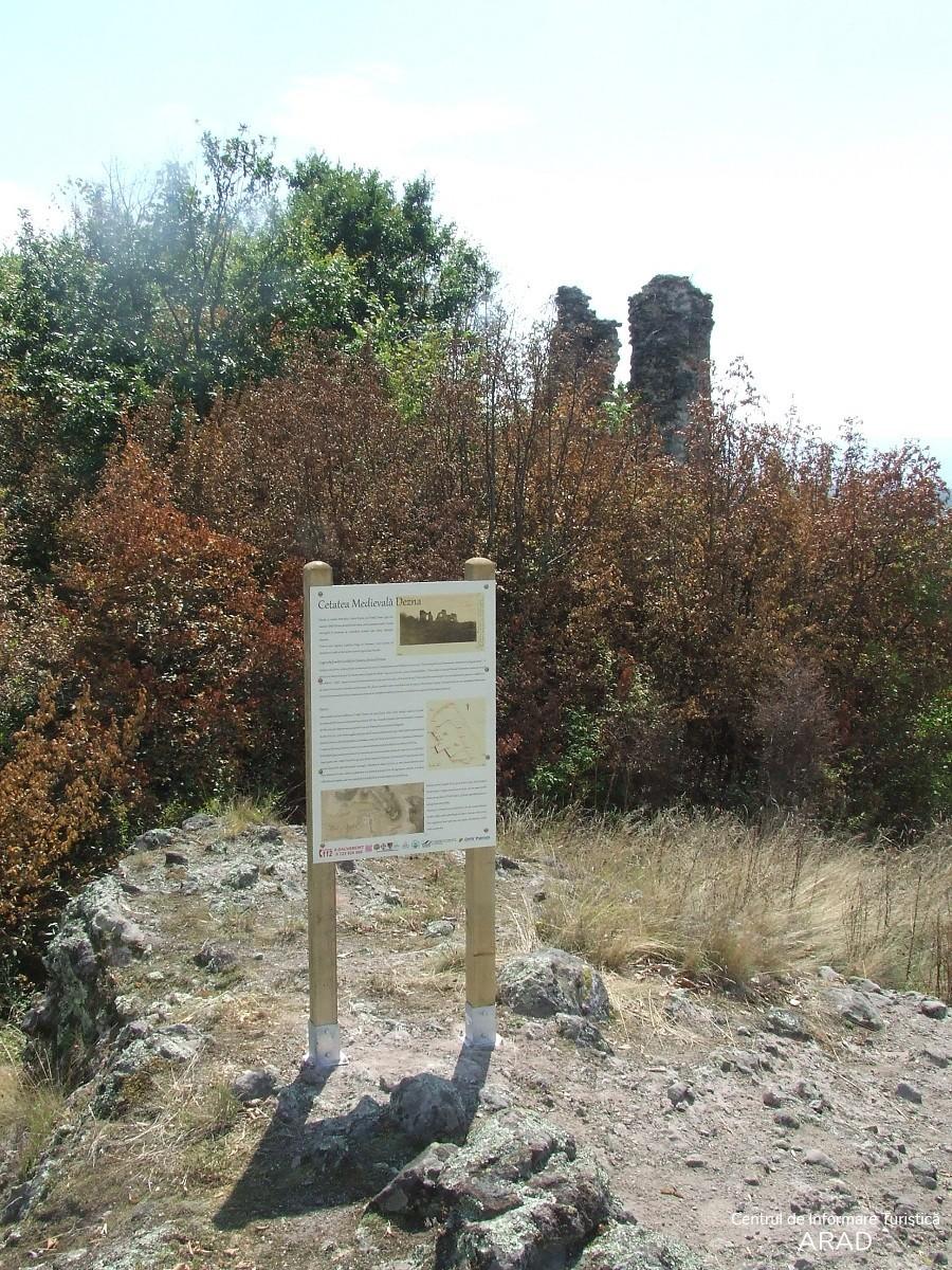 Cetatea Dezna, sat Dezna, comuna Dezna